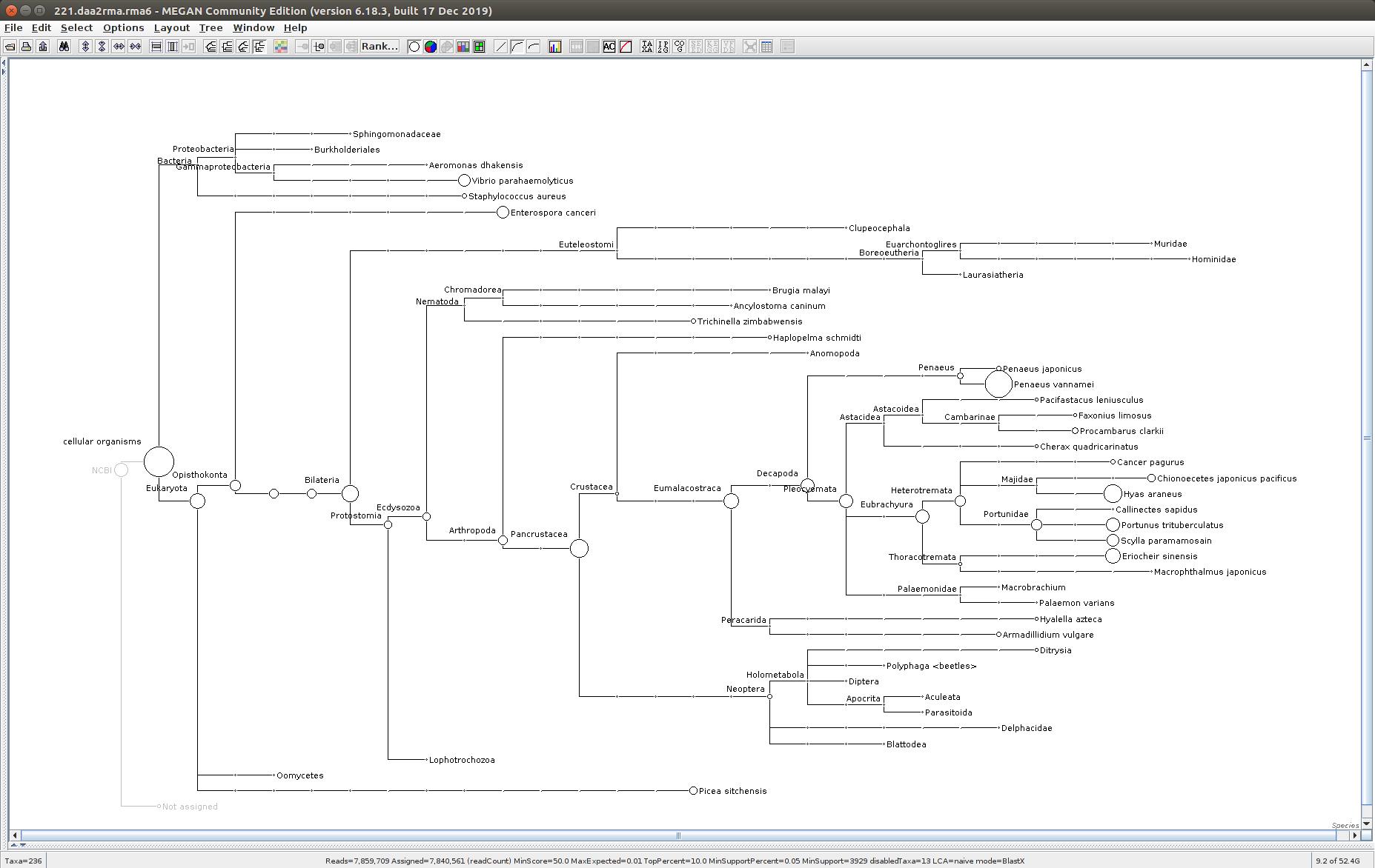 221 MEGAN6 taxonomic tree