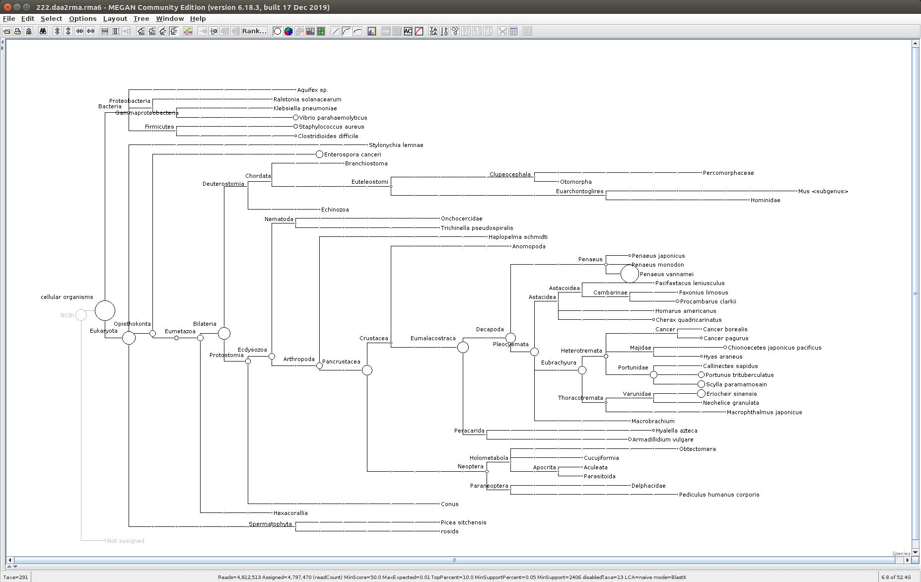 222 MEGAN6 taxonomic tree