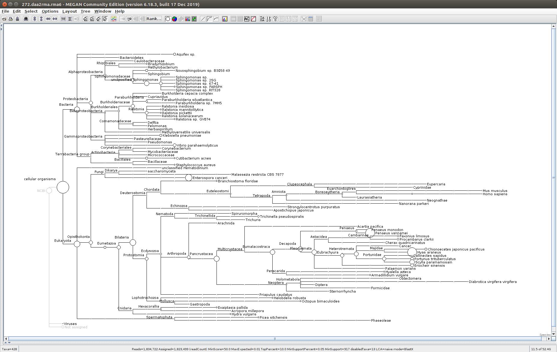 272 MEGAN6 taxonomic tree