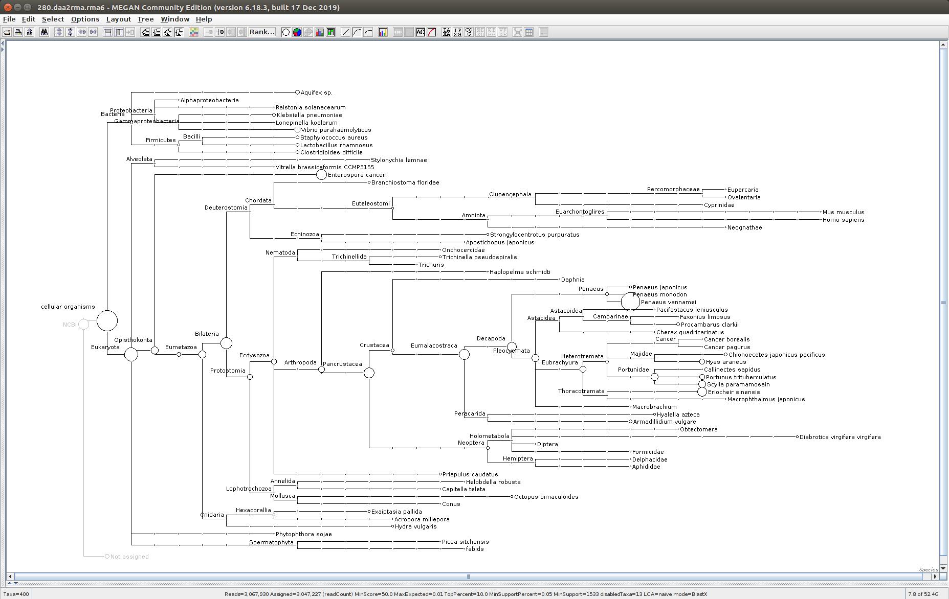 280 MEGAN6 taxonomic tree