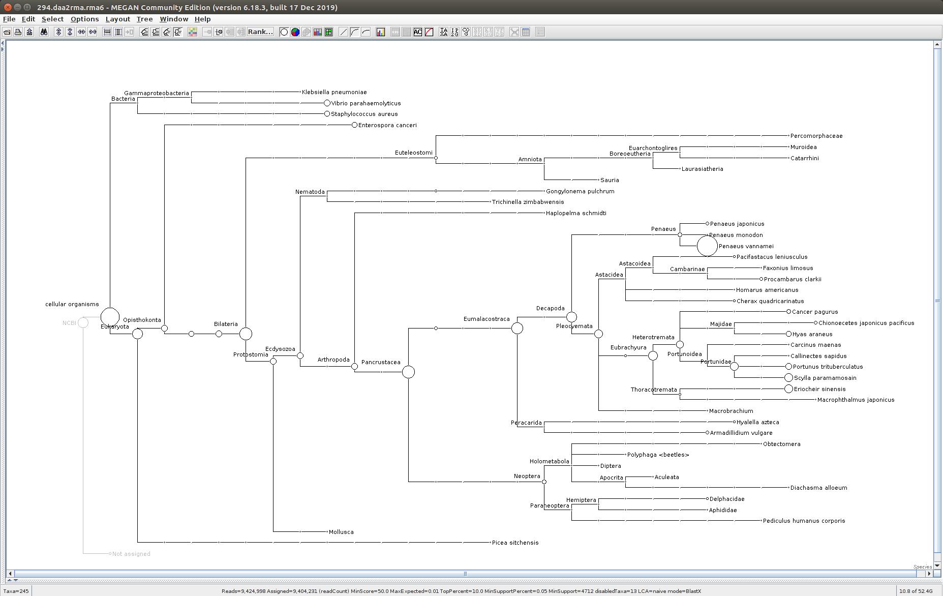 294 MEGAN6 taxonomic tree