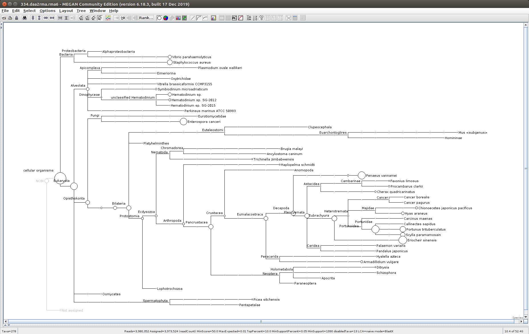 334 MEGAN6 taxonomic tree