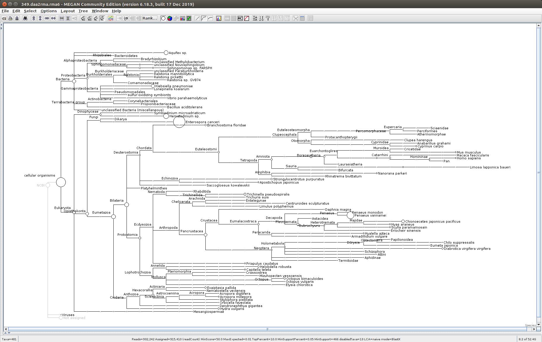 349 MEGAN6 taxonomic tree