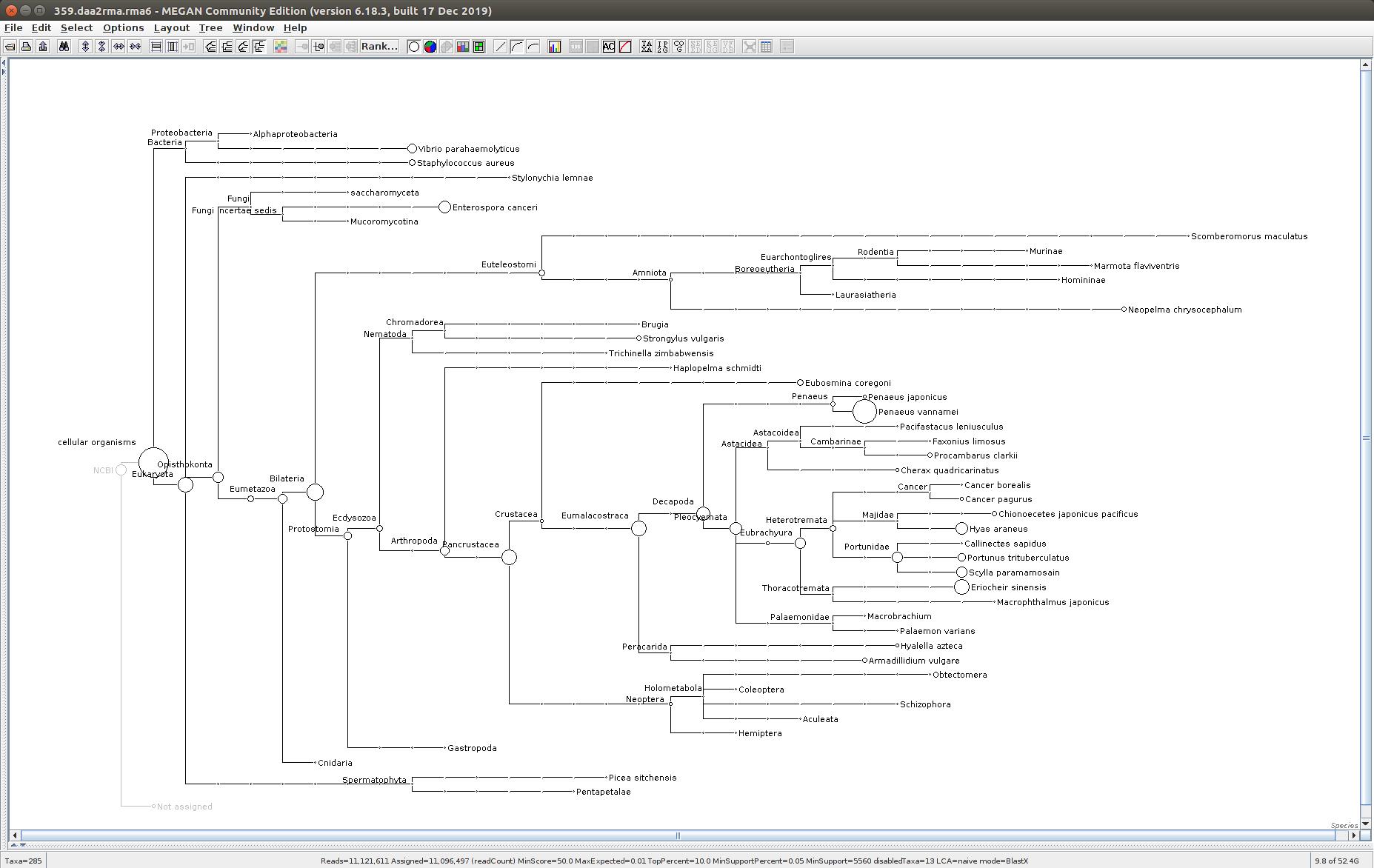 359 MEGAN6 taxonomic tree
