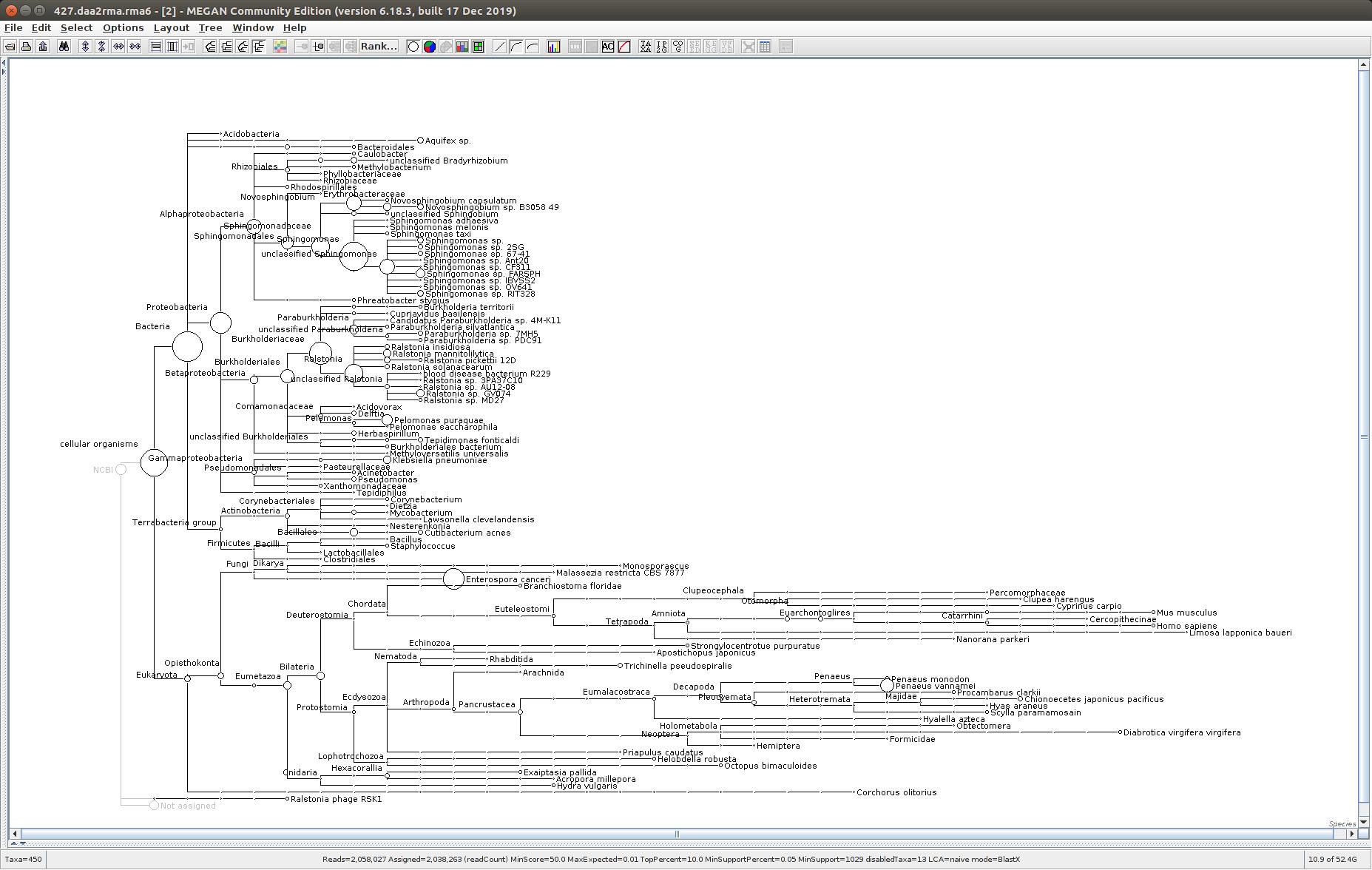 427 MEGAN6 taxonomic tree