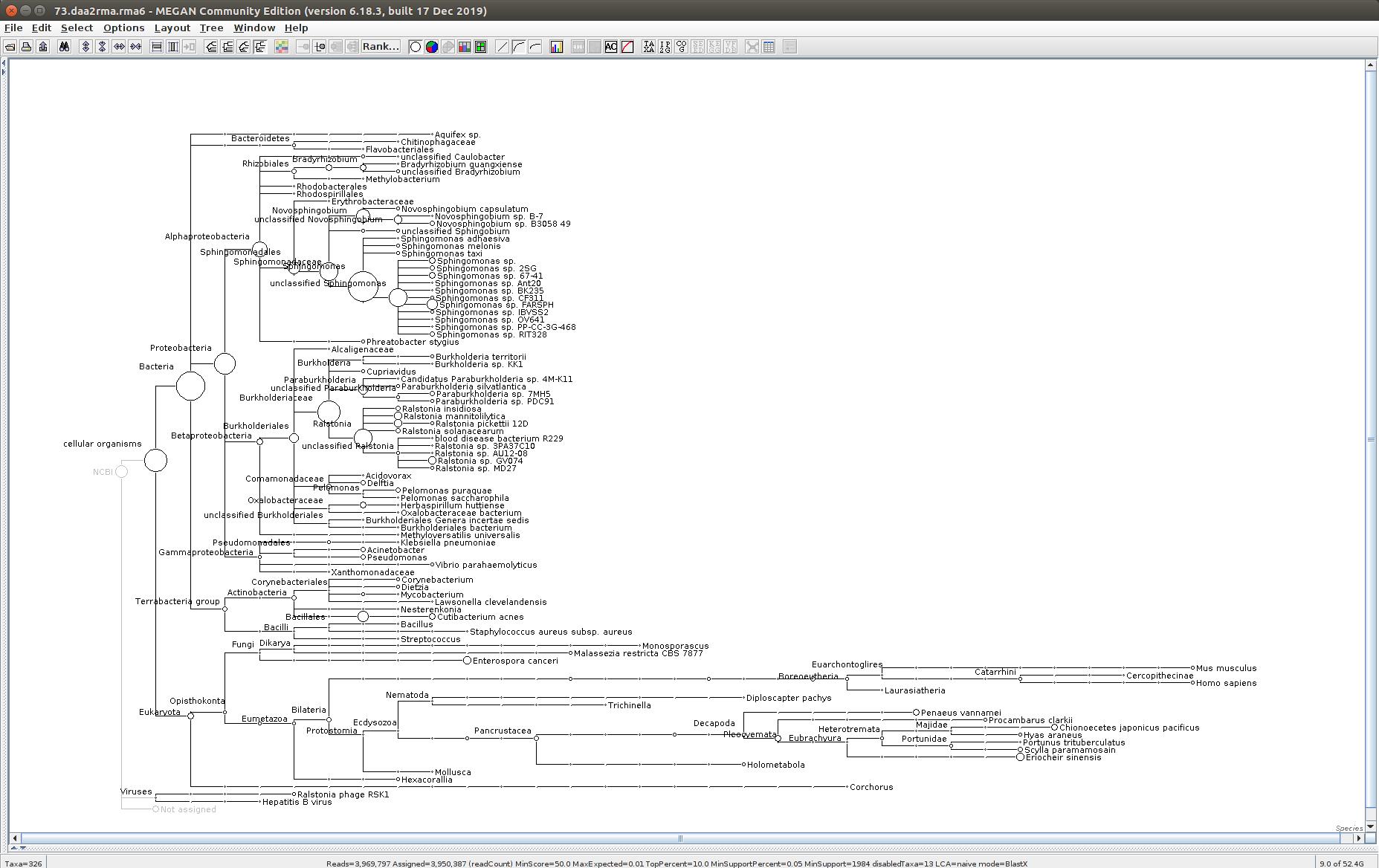73 MEGAN6 taxonomic tree