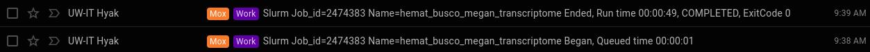 Hemat BUSCO runtime
