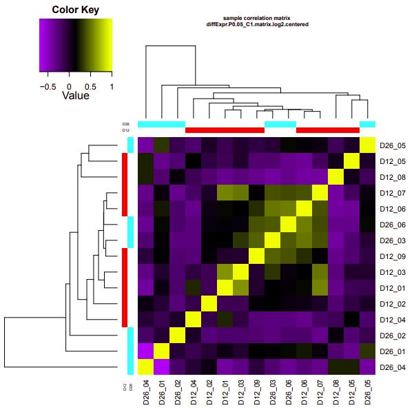 D12-D26 correlation heatmap