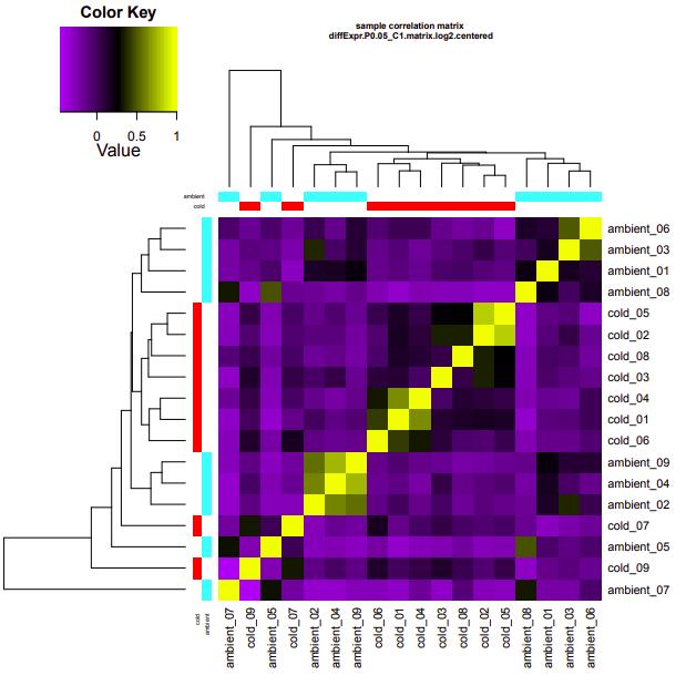 ambient-cold correlation heatmap