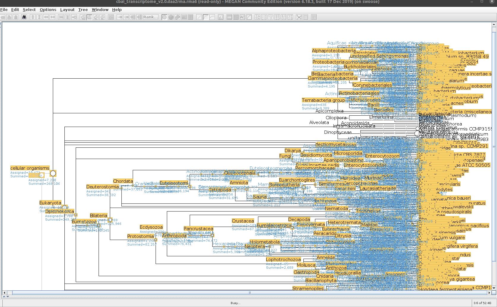 cbai_transcriptome_v2.0 MEGAN non-alveolota taxonomic tree