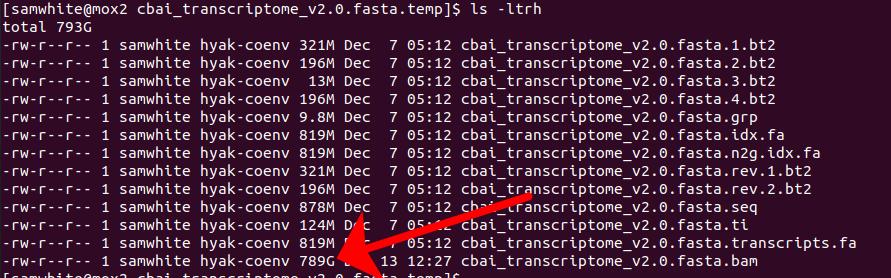 cbai_transcriptome_v2.0 BAM file size screencap