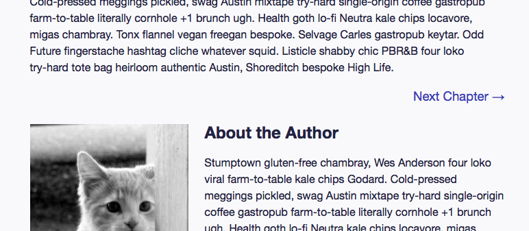 Screenshot of the footer