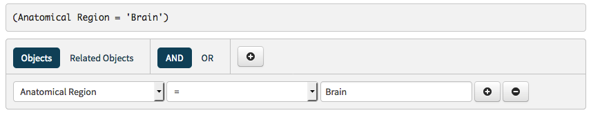 search brain