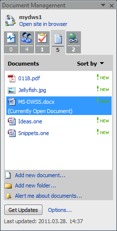 Document management pane documents