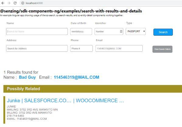 screen shot of working example