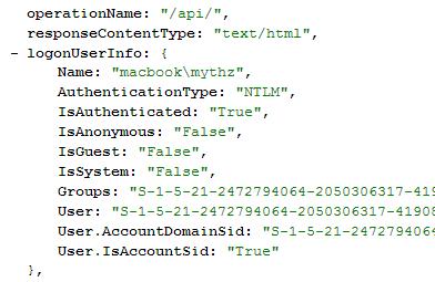 WindowsAuth DebugInfo