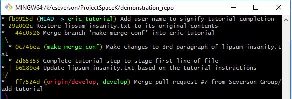 Git Command Line Log