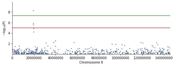 tests/output_chr8_manhattan_plot.png