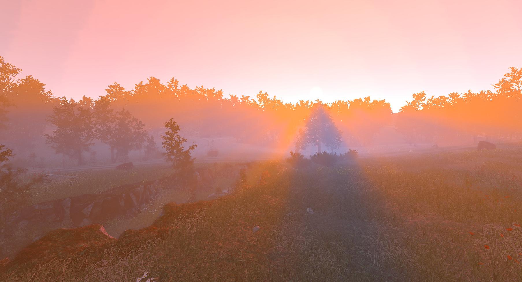 Fog result image 5