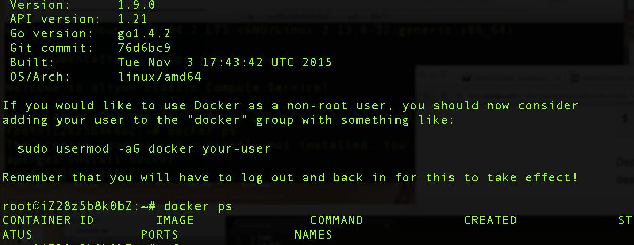aliyun docker verify