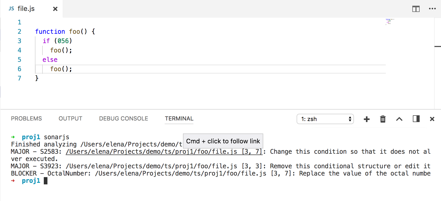 SonarJS in VS Code terminal