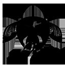 Check Out My Stuff Logo