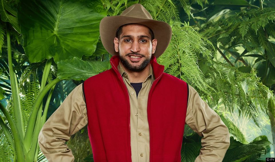 Amir Khan blasted with homophobic comments after failing Jungle task