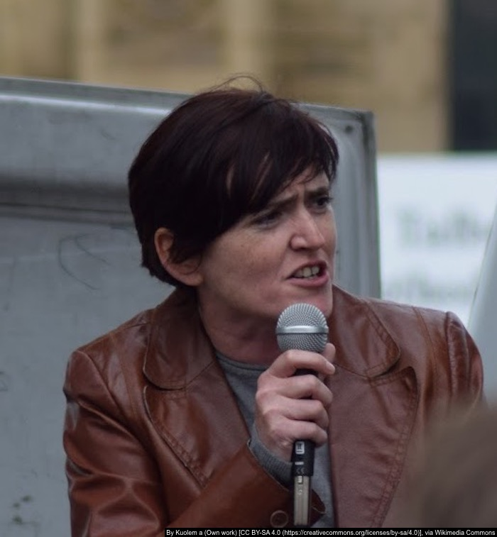 Who is Anne Marie Waters the UKIP leadership hopeful?