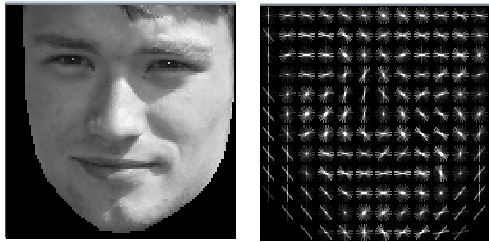 Sample aligned face and HOG image