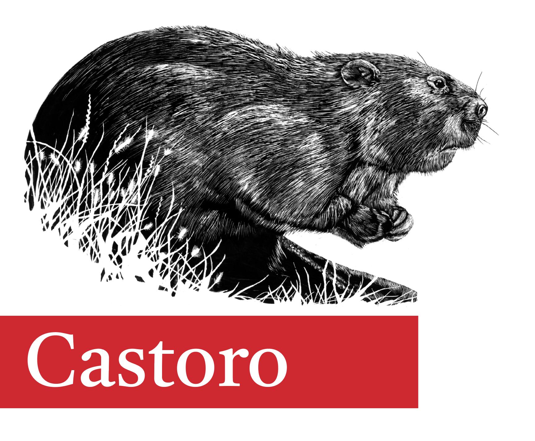 Castoro banner