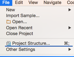 Project Setting 1