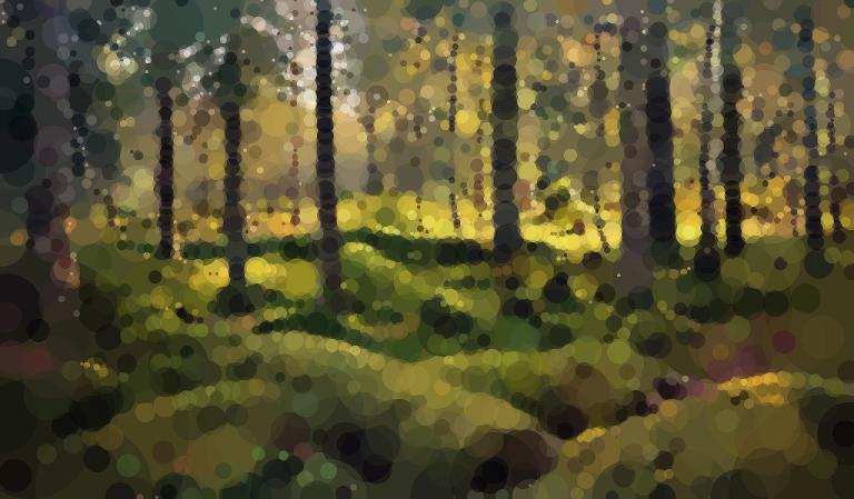 Geometrized Forest