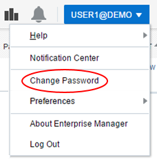 Change password menu option