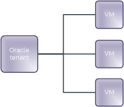 Organisation of Oracle estate