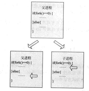 WeiyiGeek.fork函数