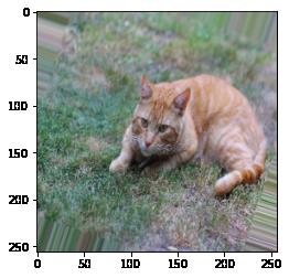Rotation cat