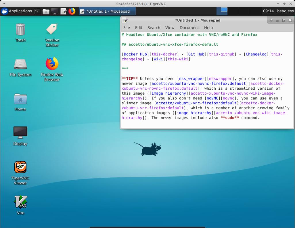 GitHub - accetto/ubuntu-vnc-xfce-firefox: Headless Ubuntu/Xfce