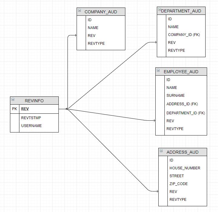 database-audit-schema