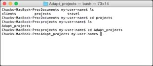 Mac OS X's Terminal