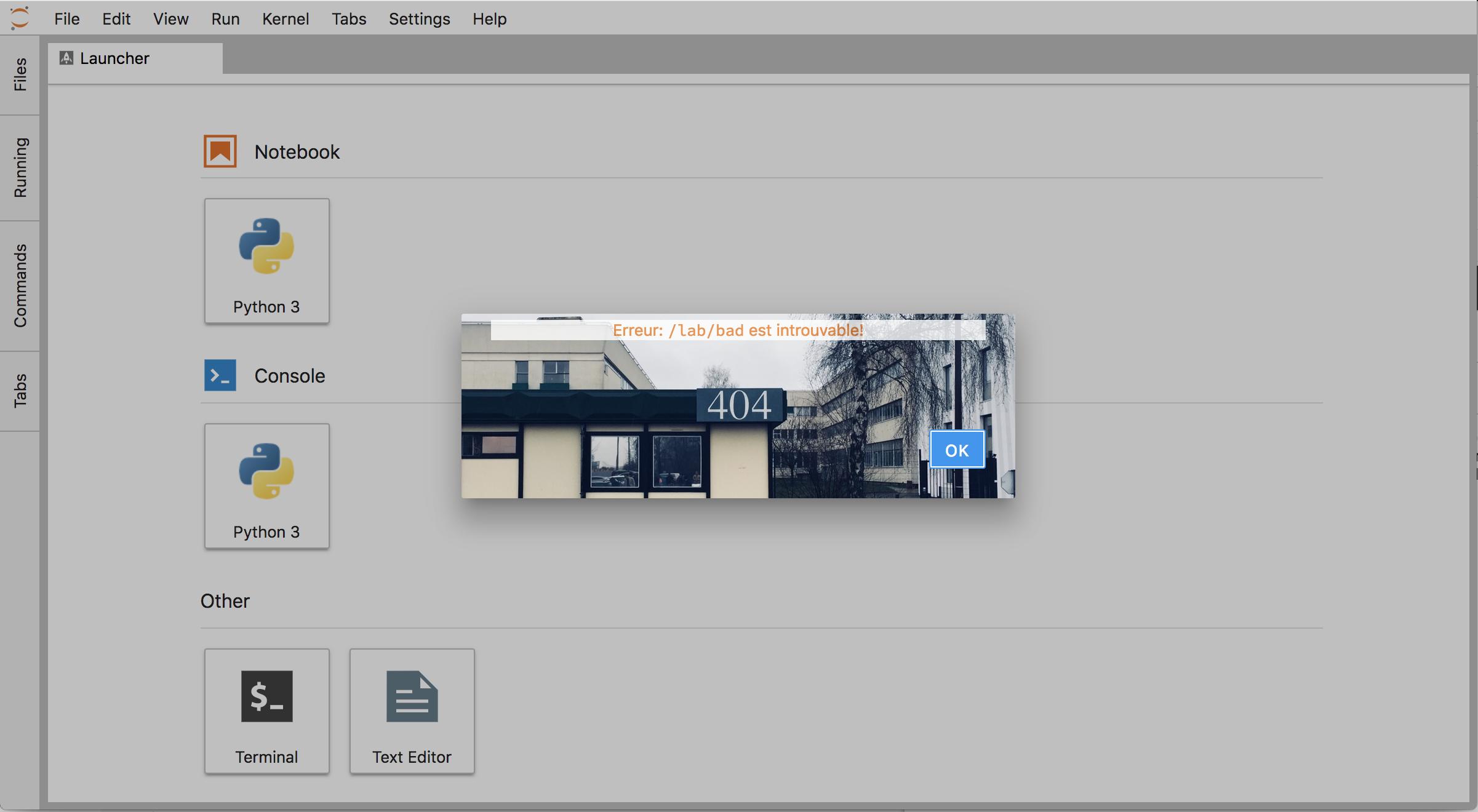 @afshin/custom404-extension screenshot