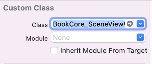 Custom Class set to BookCore_SceneViewWrapper, with Module None and Inherit Module From Target unchecked