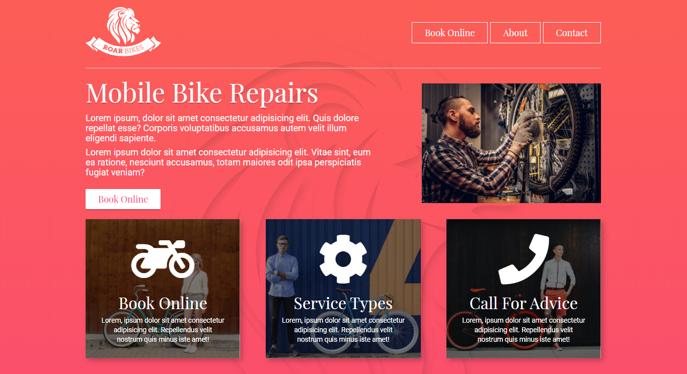 bike repair website