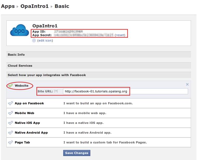 Facebook Developer app settings
