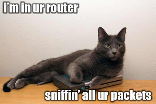 cat_packet_sniffin