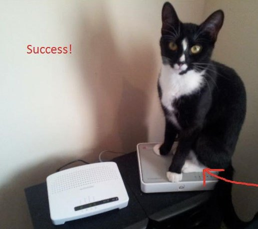 decoy_router