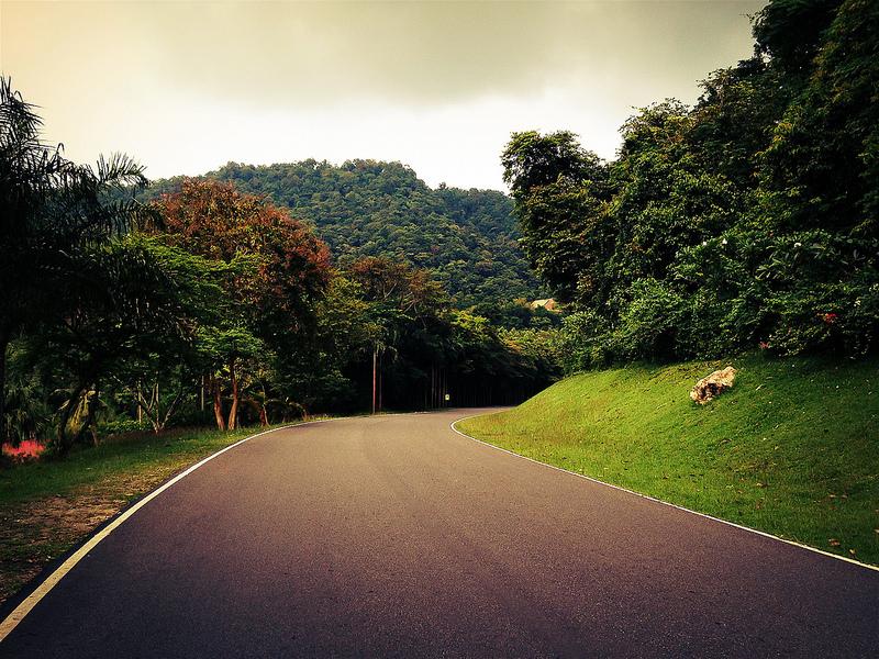 Дорога в зоопарке Као Кхео