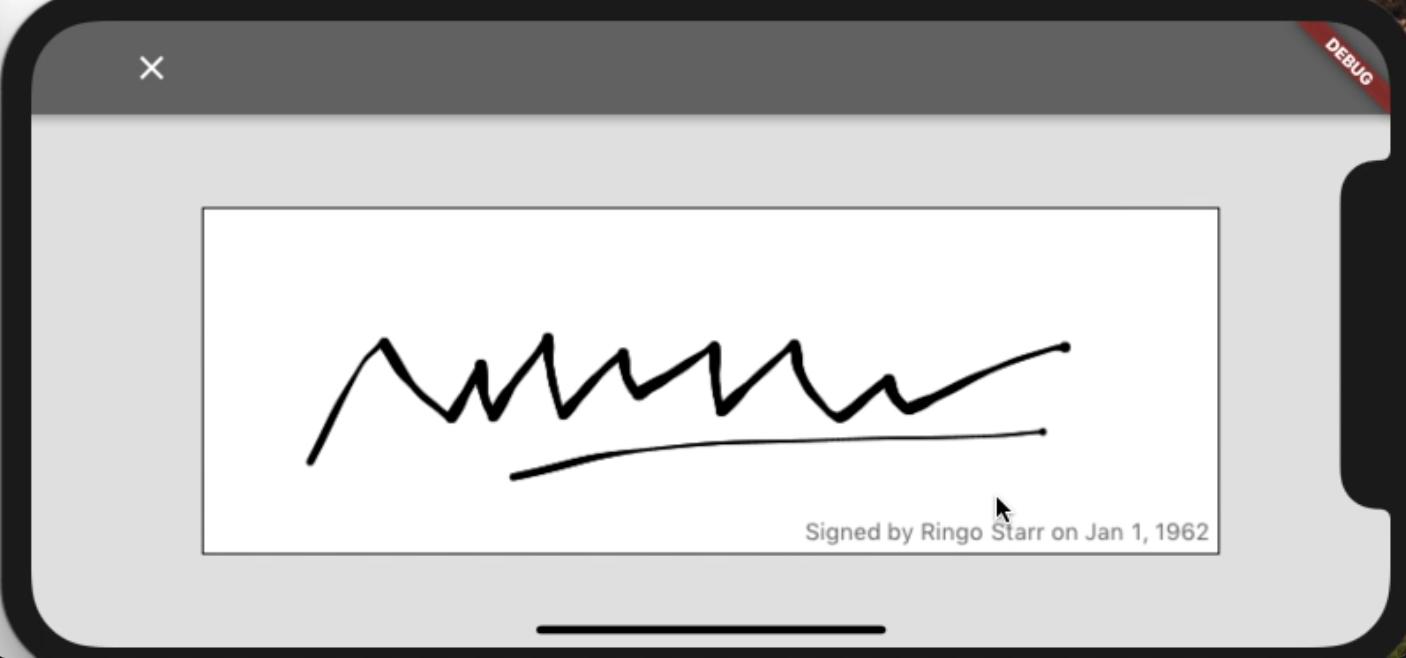 Signature Pad Demo IOS