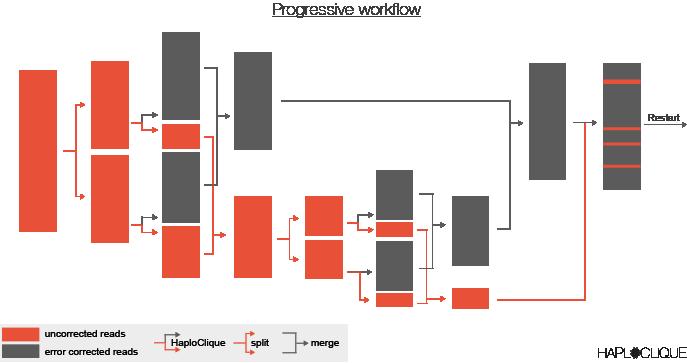 HaploClique workflow