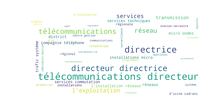 wordcloud_directeur_telecomm