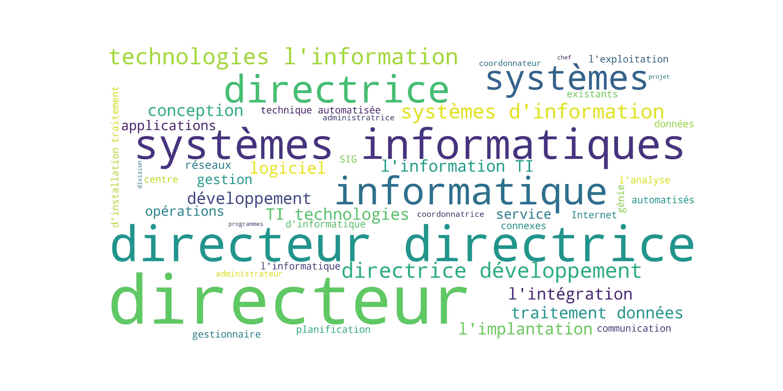 wordcloud_gestionnaire_informatique